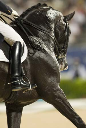 Van Grunsven of Netherlands riding Salinero performs during the equestrian dressage grand prix competition at the Beijing 2008 Olympic Games in Hong Kong